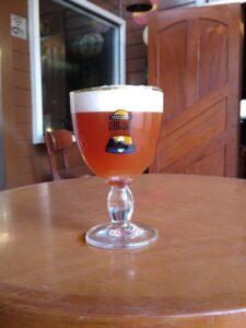 Tulp, a cerveja de Primavera da Abadia das Gerais, chega hoje ao mercado mineiro brindando à nova estação