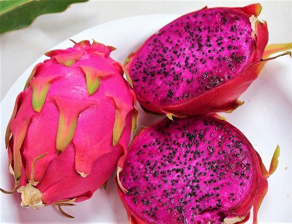 Pitaya é uma fruta da América Latina